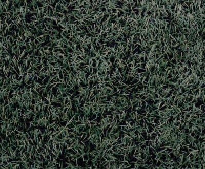 Best Artificial Grass Suppliers